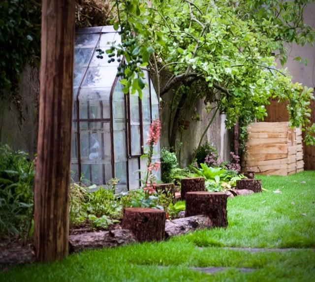 Woodland glade garden